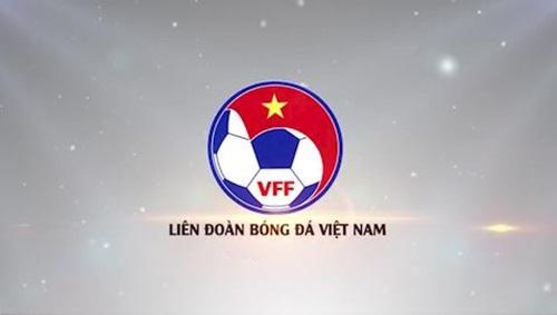 Thực chất VFF là gì? Vai trò của VFF với bóng đá Việt Nam